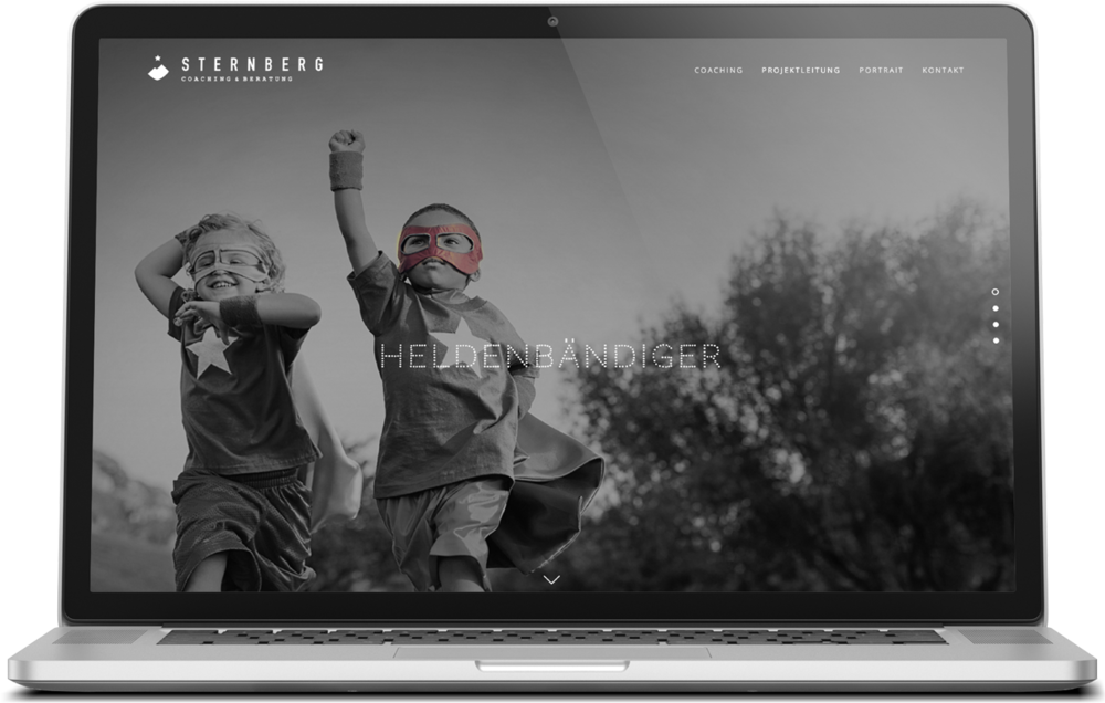 Sternberg Coaching  Corporate Design & Website  → Showcase