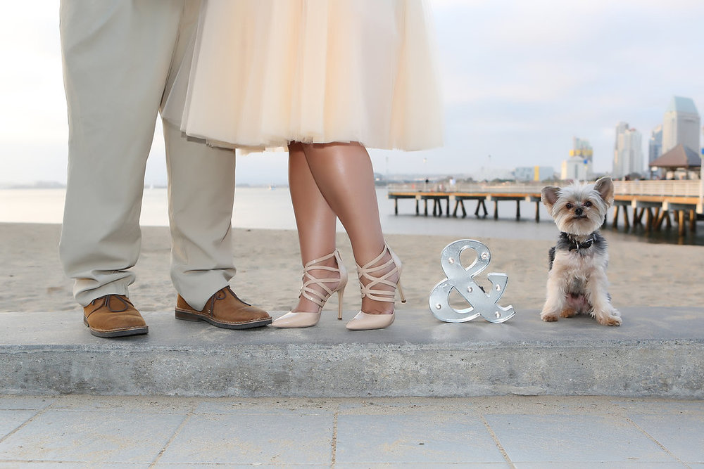 Winner Rocco with Brenda and Martin at Coronado Landing by Shadowcatcher Imagery