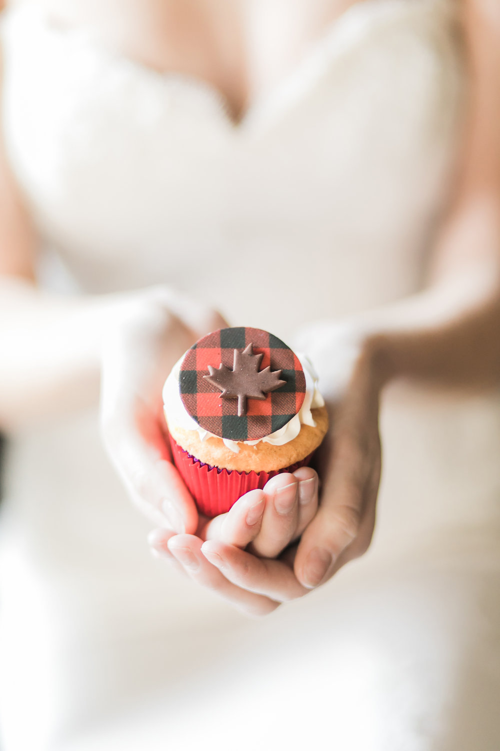 Canadian_black_red_silver_wedding_editorial_shoot-334.jpg