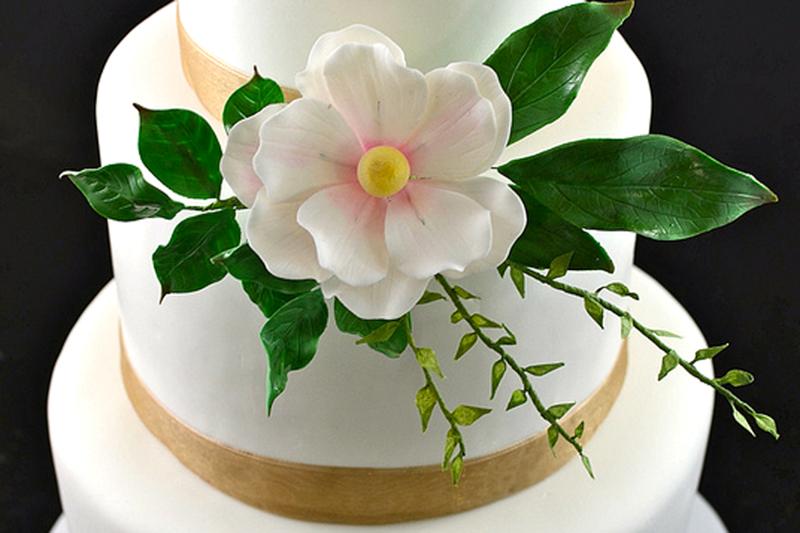 Jenny wenny cakes