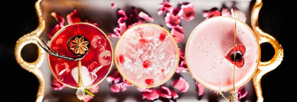 snake oil cocktail co red.jpg