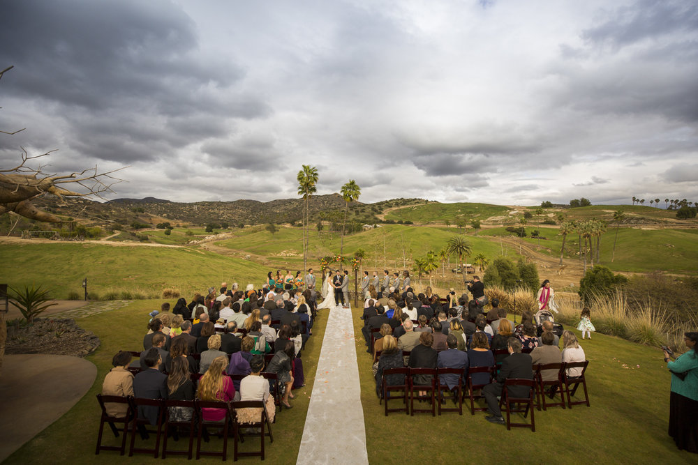 Safari-Park-Wedding-Stephanie-and-Sam-Brant-Bender-Photography-036.jpg
