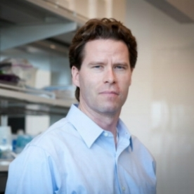 William Seeley, MD - Selective Vulnerability Research Lab Dr. Seeley attended medical school at the University of California at San Francisco (UCSF), where he first encountered patients with frontotemporal dementia (FTD) in 1999, during a research elective with Bruce Miller. He then completed a neurology residency at Harvard Medical School, training at the Massachusetts General and Brigham & Women's Hospitals. Returning to UCSF for a Behavioral Neurology fellowship, with Bruce Miller, Dr. Seeley developed expertise in the differential diagnosis and treatment of patients with neurodegenerative disease. Struck by the focality of these illnesses, he began to question how events at the molecular level could target small subsets of the brain's more than 20 billion neurons. This biological problem, referred to as selective vulnerability, has become the primary focus of Dr. Seeley's research.