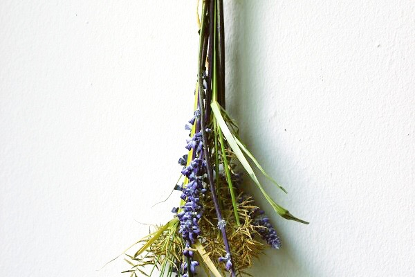 DRIED LAVENDER AND FRIENDS
