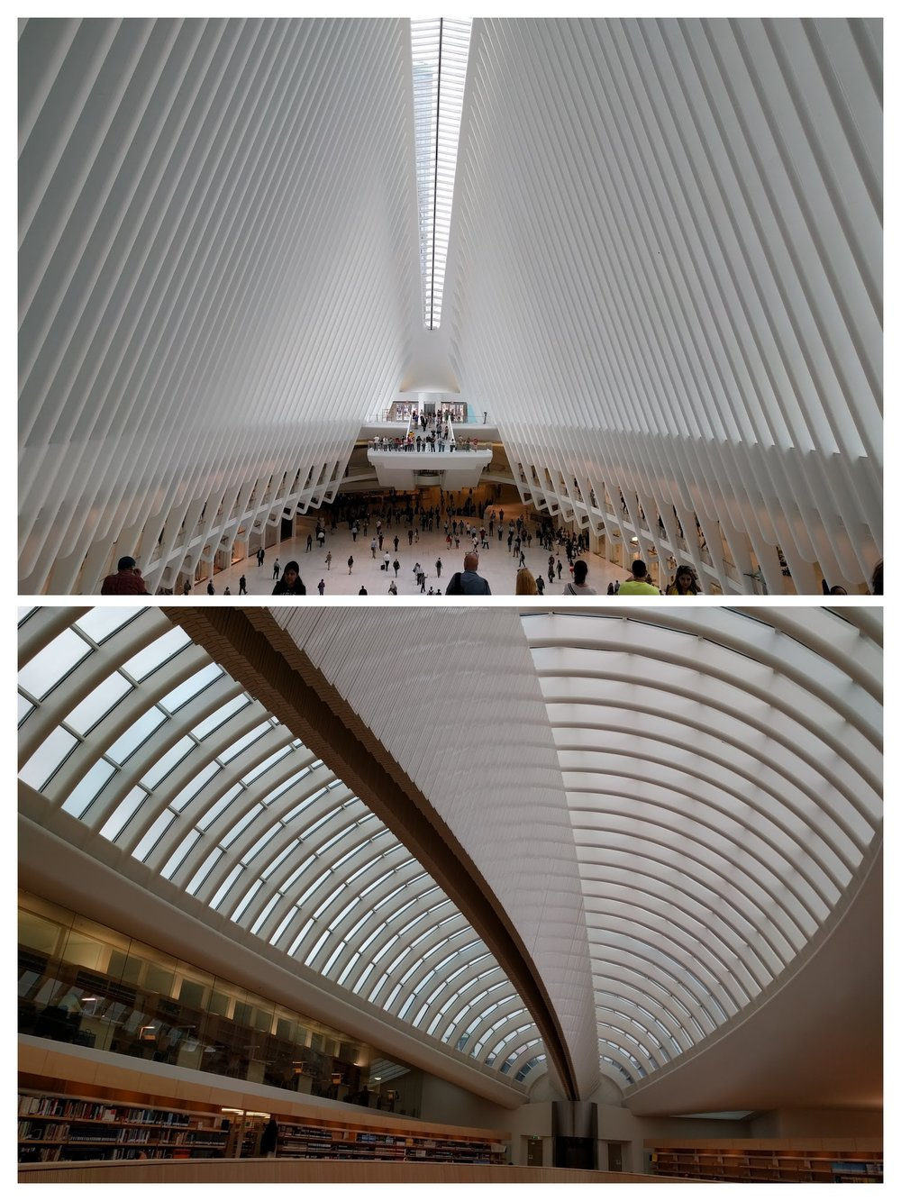 Top: Santiago Calatrava's World Trade Center Transportation Hub Bottom: his law library at the University of Zurich