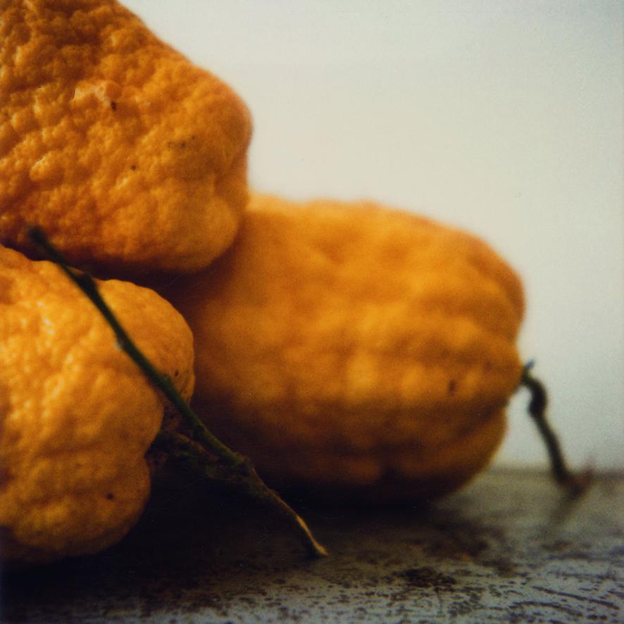 Citrons_VII.jpg