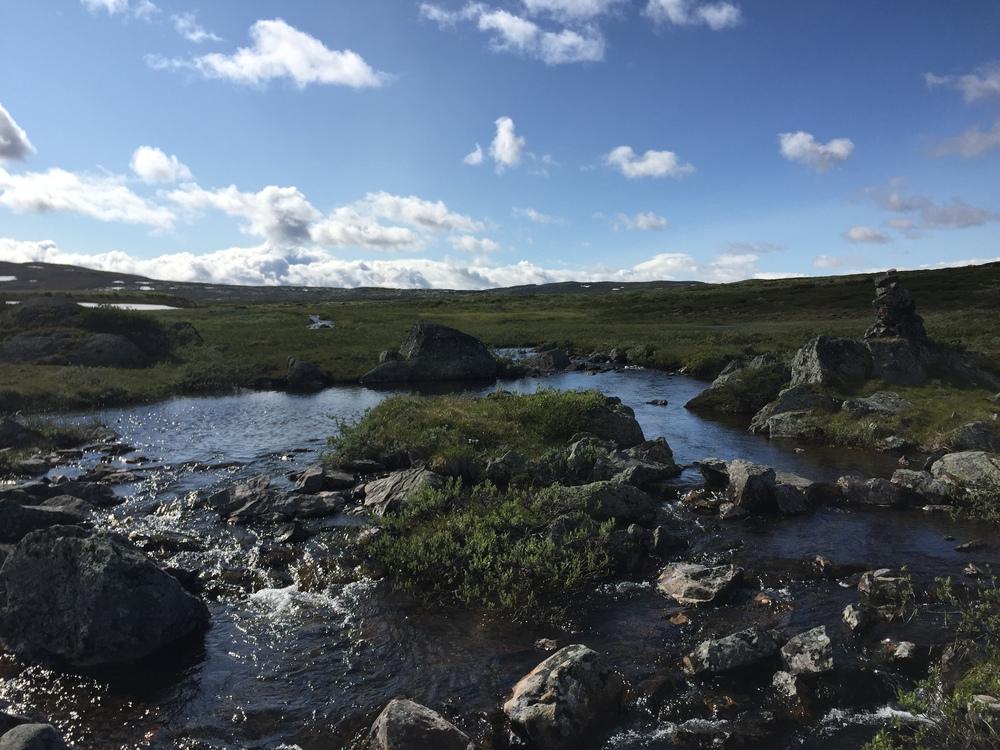 Hardangervidda er Europas største høyfjellsplåta.