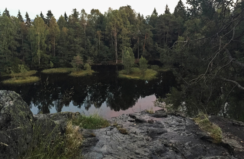 På oppsiden av Bånntjern.