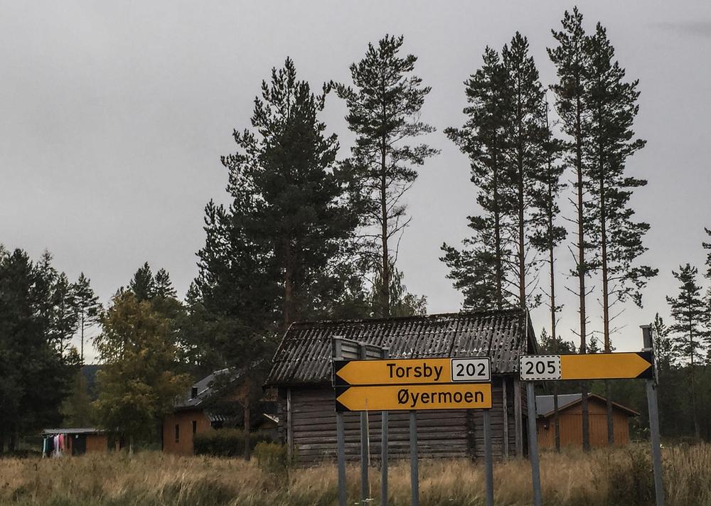 Du trenger ikke reise via Strømstad for å havne i Sverige. Riksvei 202 tar deg også dit. Vær forberedt på øde steder om du forviller deg langs den.