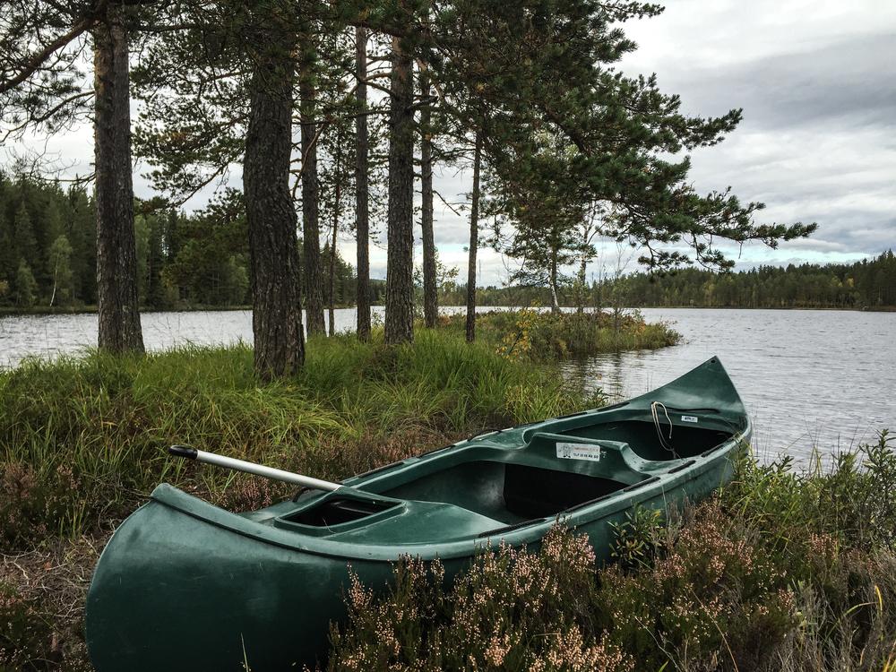 Ved dette vannet var det tomt for folk, men kanoer som ingen brukte. Det ble en tur til denne lille øya. Den største mauren jeg har sett holdt til her.