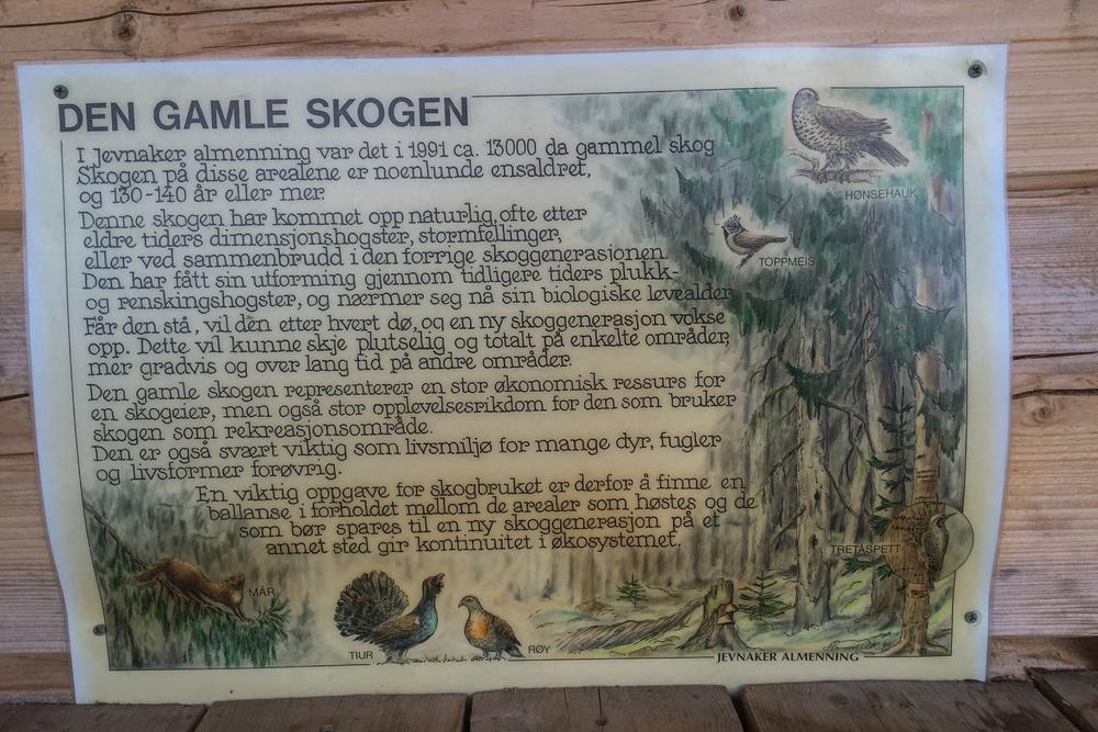 Inne i rastebua er det plakater med kloke ord om skogen.