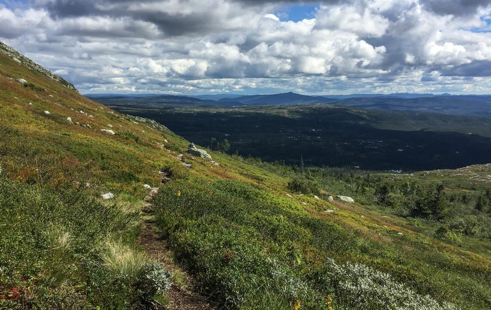 Denne stien mot Sørstul er brillefin og har magisk utsikt. Her må jeg bare stoppe og rope av glede.Prøv denne stien neste gang istedenfor den som går direkte til Nordstul.