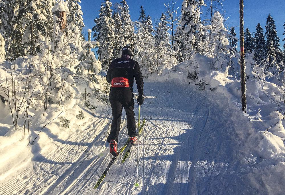 I midten av januar 2016 er det knallføre i Lillomarka. Petter holder god fart.