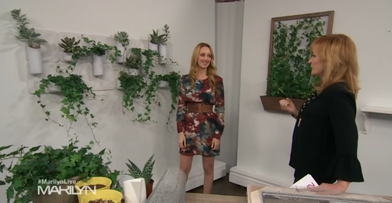 living walls marilyn denis.png
