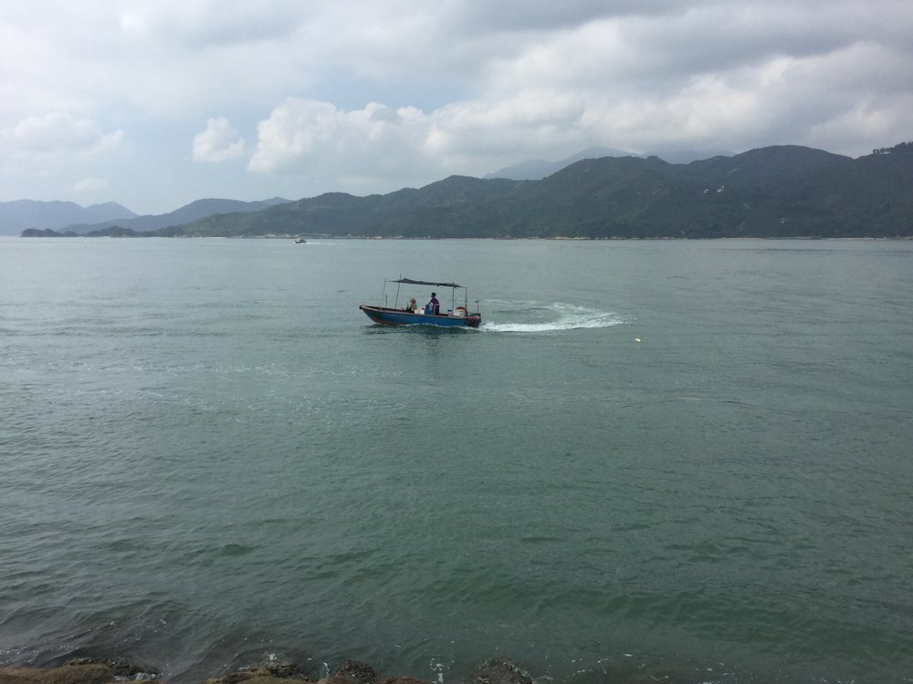 These guys are demonstrating a very traditional fishing method: the fellow in the front has a bucket and he is banging on it with two sticks - if you look closely you can see him drumming. The noise scares the fish and makes them swim away - directly into the net!