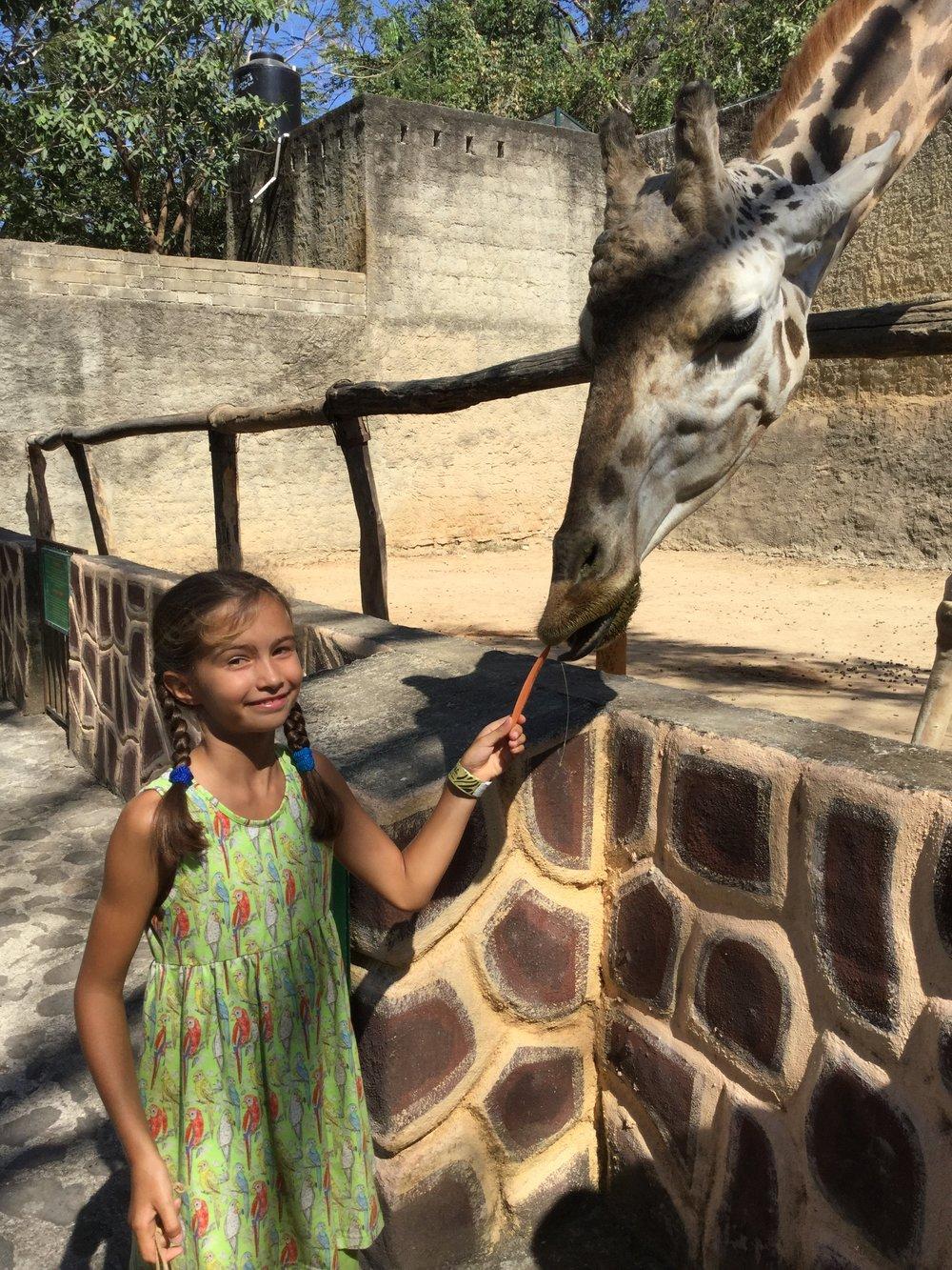 Lili feeding the very friendly giraffe.