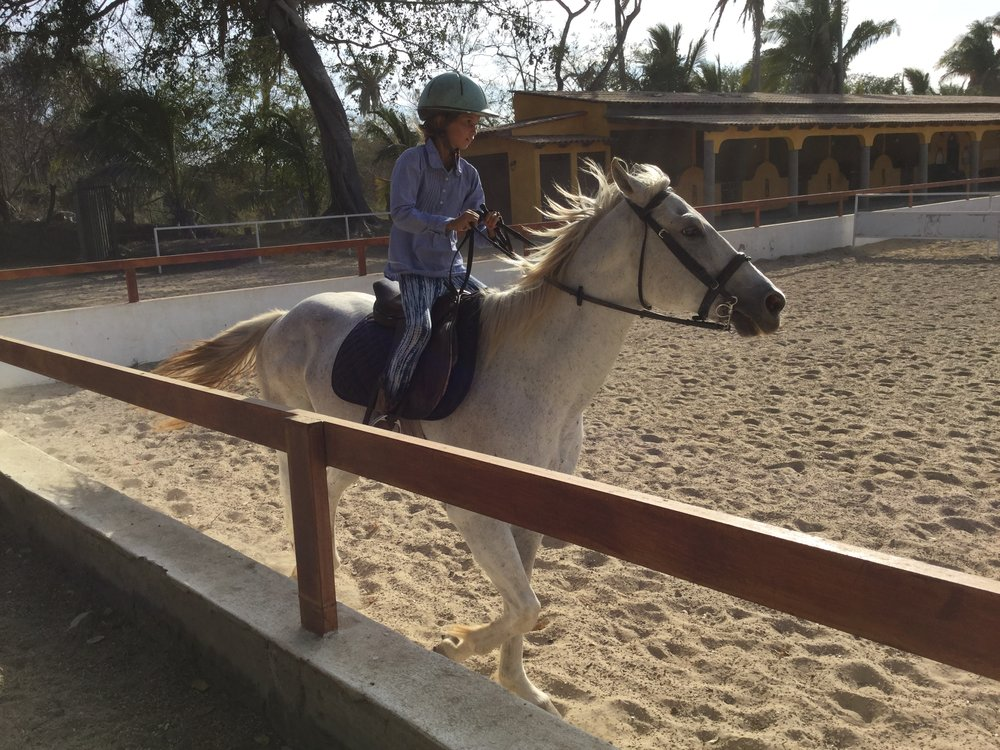 Here Lili is practicing in the kids ring with Snowball. She is learning to keep her hands lower - check other photos for progress.