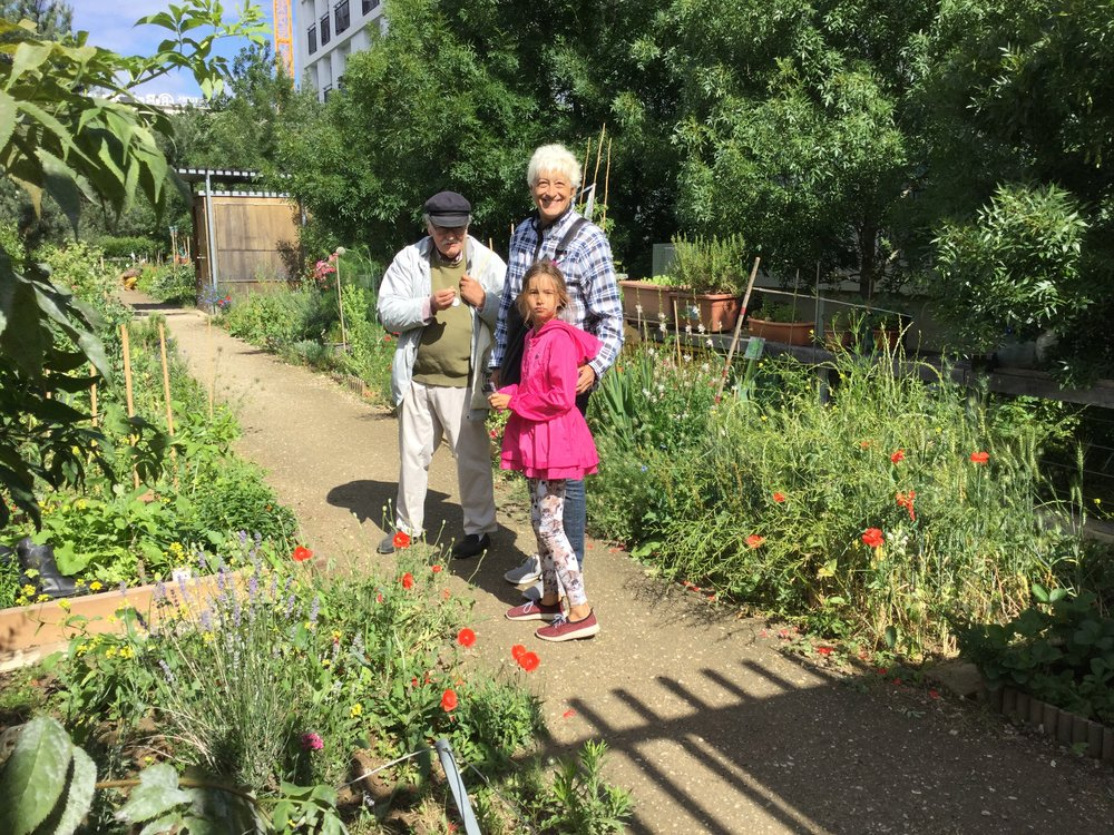 At a community garden next to low cost housing.