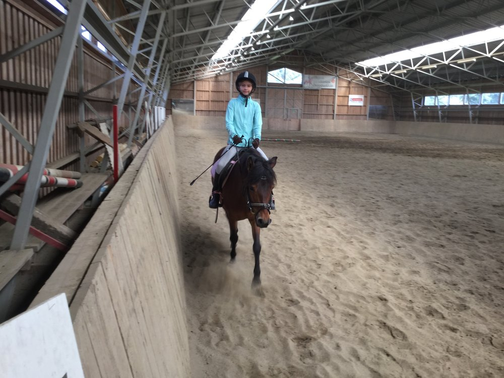 Lili on Guni on what ended up being a private jumping class. Jump! Jump!