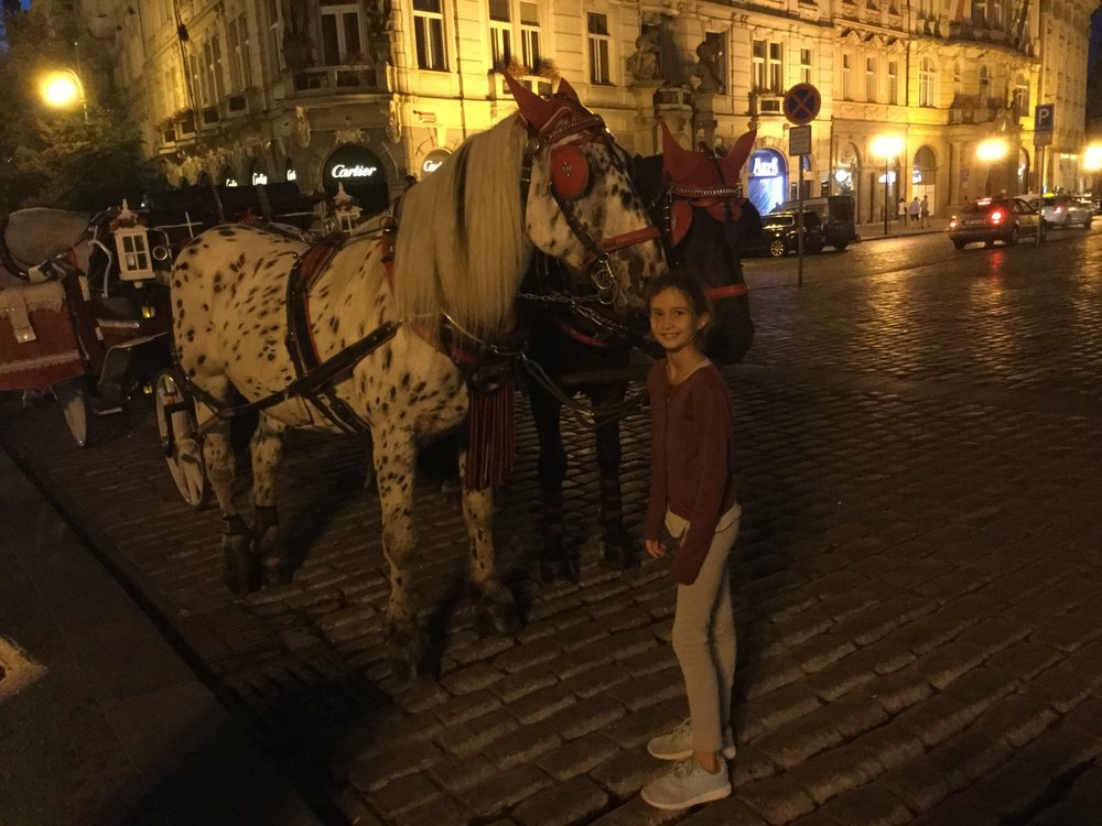 Lili loves going to see the sightseeing horses.