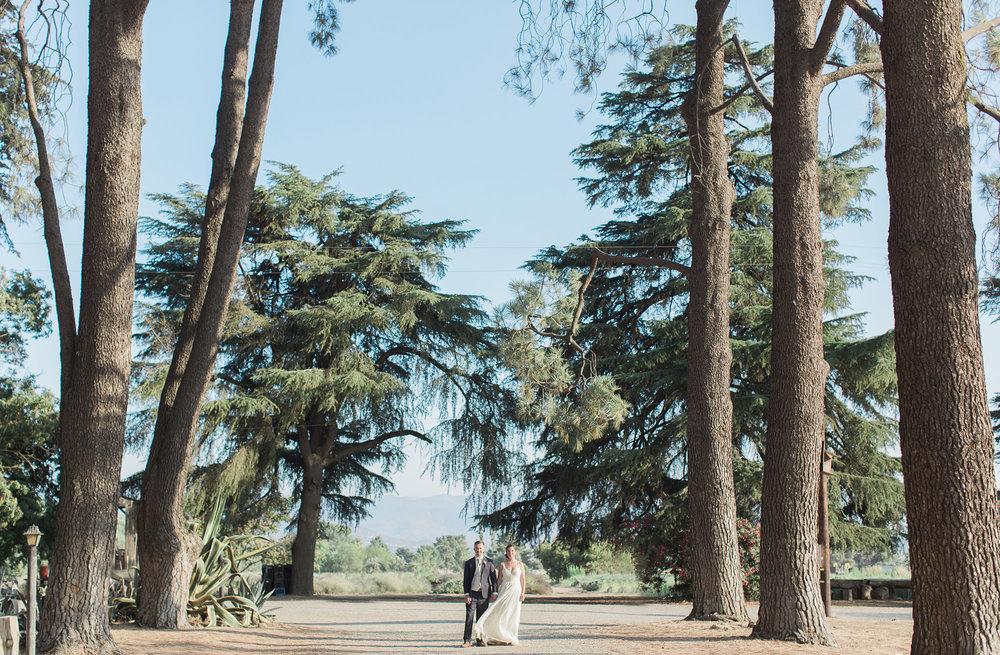 Highland Springs Resort Wedding Photographer Leah Vis 36.jpg
