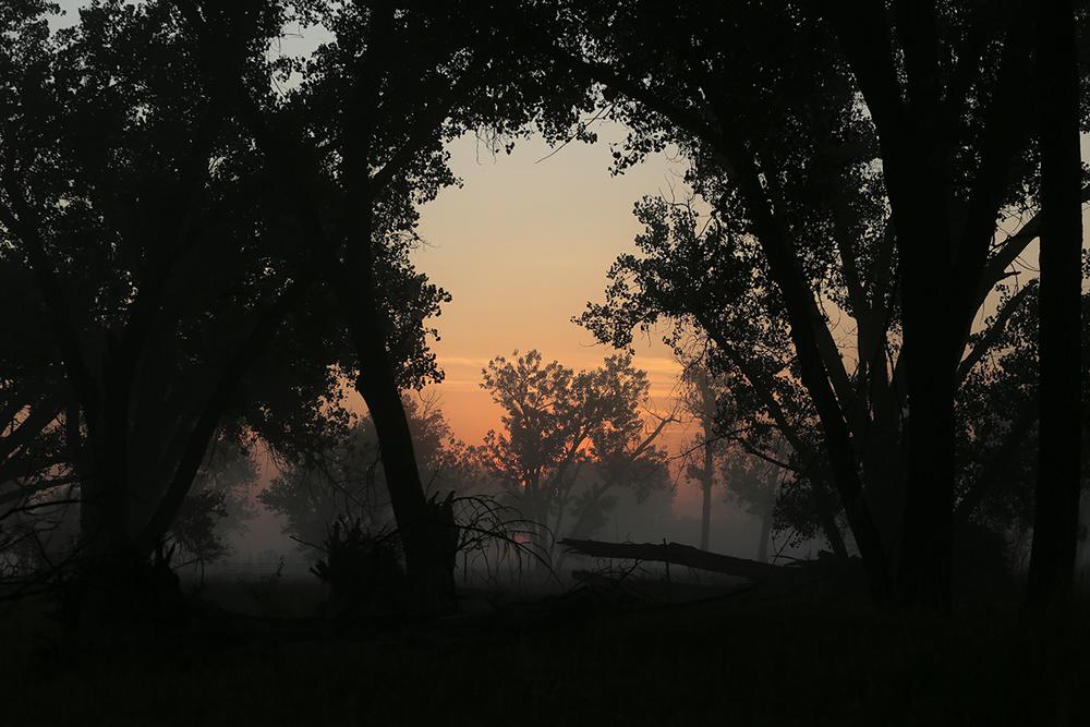 Smoky sunrise Broadus, MT