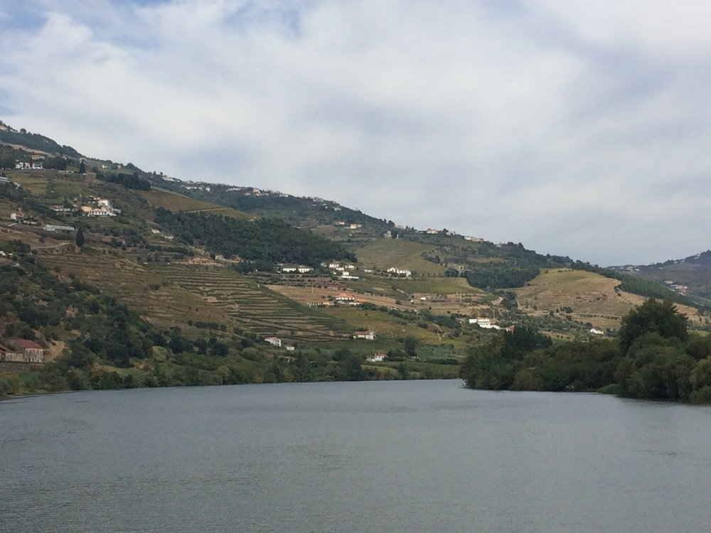 Vineyard terraces of the Douro Valley