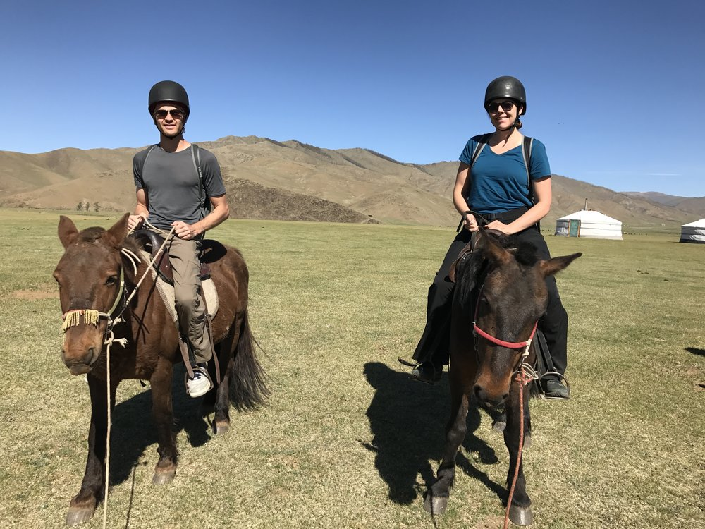 Mongolian horses are small, but strong