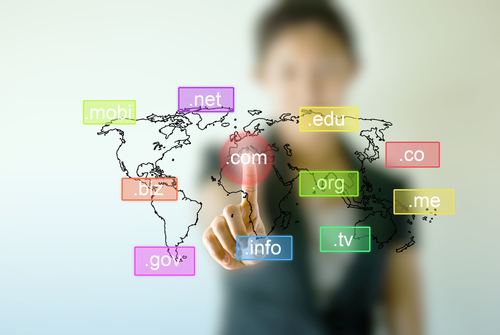 Trademark owners should create a healthy mix of country-specific and product-oriented Internet addresses.