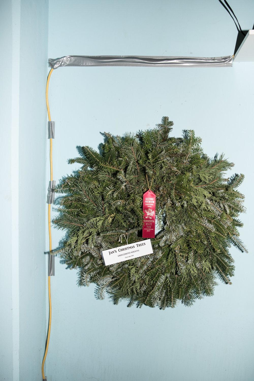 Christmas Tree Shopping for Cosmopolitan