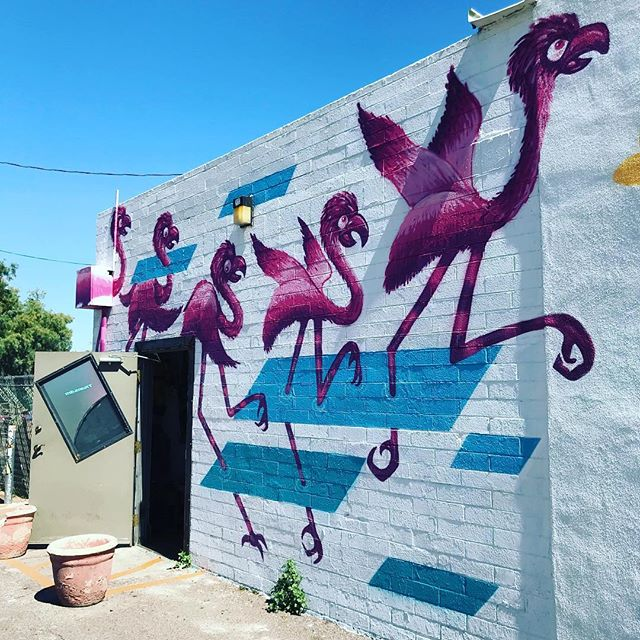 Phoenix is pretty dope... murals and original artwork abound!  Right now Art Detour is happening — a festival that's been celebrating local artists and their contributions to the Phoenix aesthetic. If you're here, you NEED to check it out tomorrow! . . . #hihostels #hostellife #art #artsoninstagram #muralart #murals #phx #dtphx #dtphxart #artdetour31 #travelgram #wanderer #travelmore