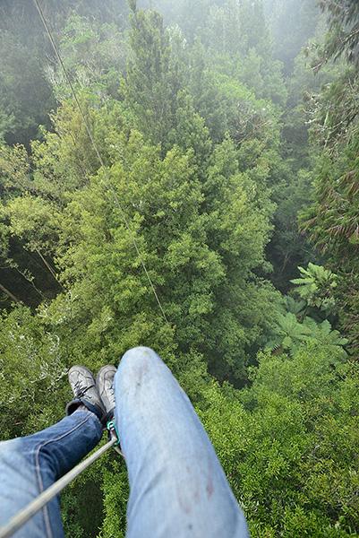 Arno climbing.jpg
