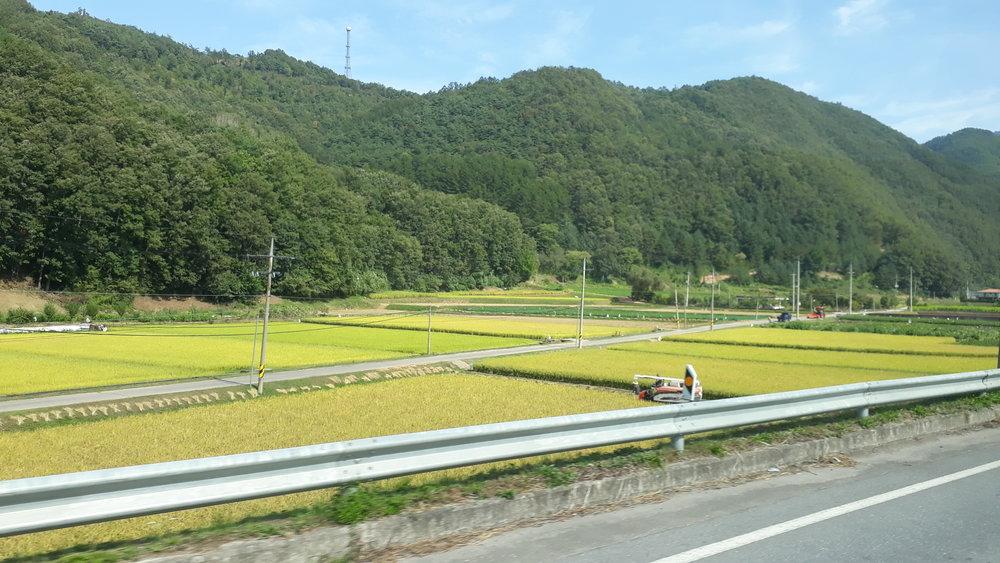 Ruta de Seúl a Guinsa (unas 3 horas de viaje en bus)