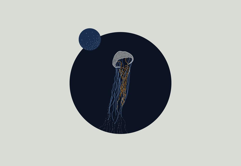 composicion-nocturna4.png