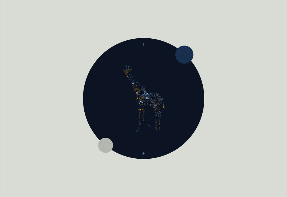 composicion-nocturna8.png