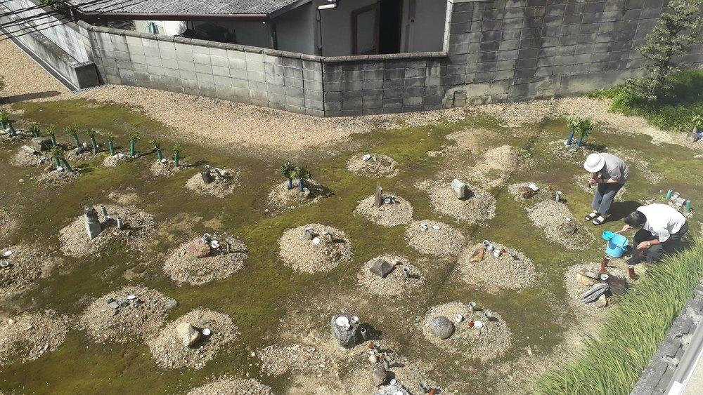 Cementerio detrás del apartamento