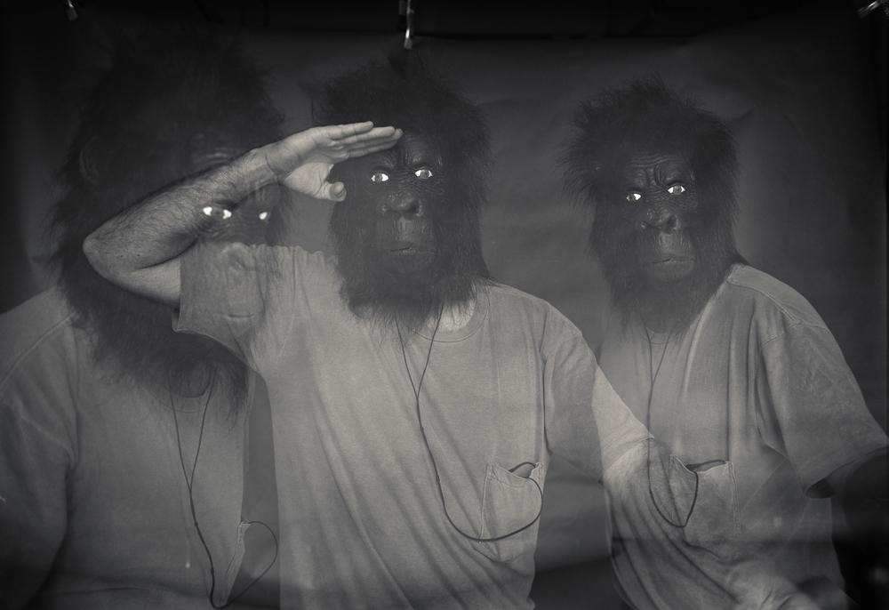 GorillaGodzilla003.jpg