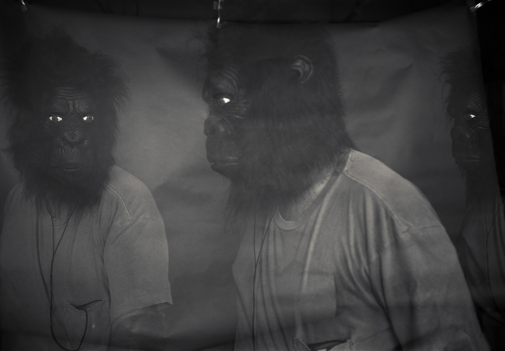 GorillaMarch001.jpg