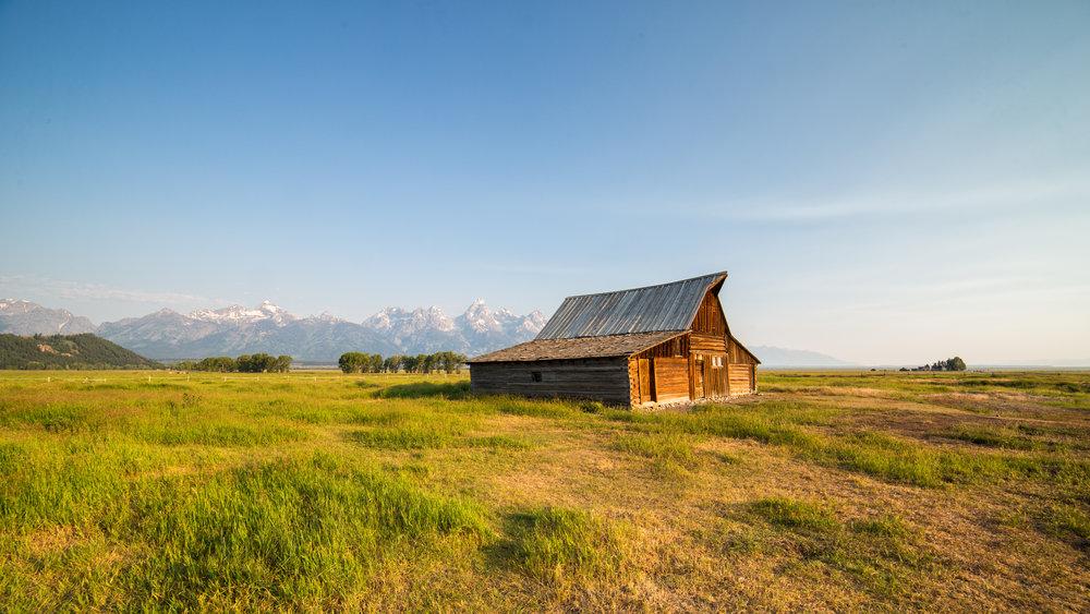 Teton Morning (click to enlarge)