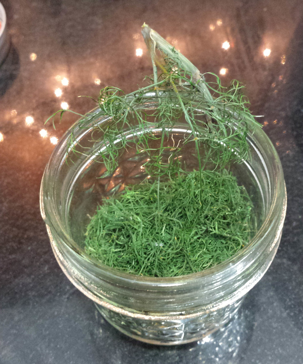 dried dill that has been partially crumbled into a storage jar.