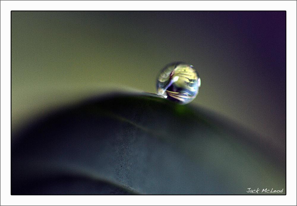 WaterDrop&Leaf3_matte.jpg