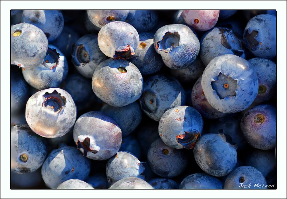 blueberries_matte.jpg