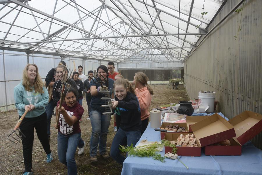 greenhouse crew2.jpg