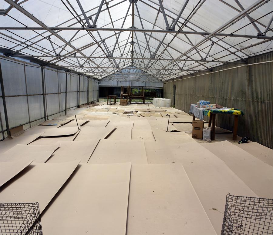greenhouse ready 6-19-14.jpg