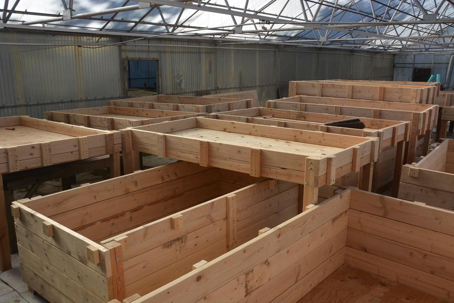 aquaponics tables&boxes.jpg