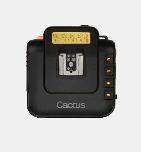 cactus-V6-birdview