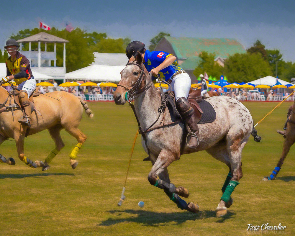 Polo for Heart 2016 - post processed with Topaz Impression 2