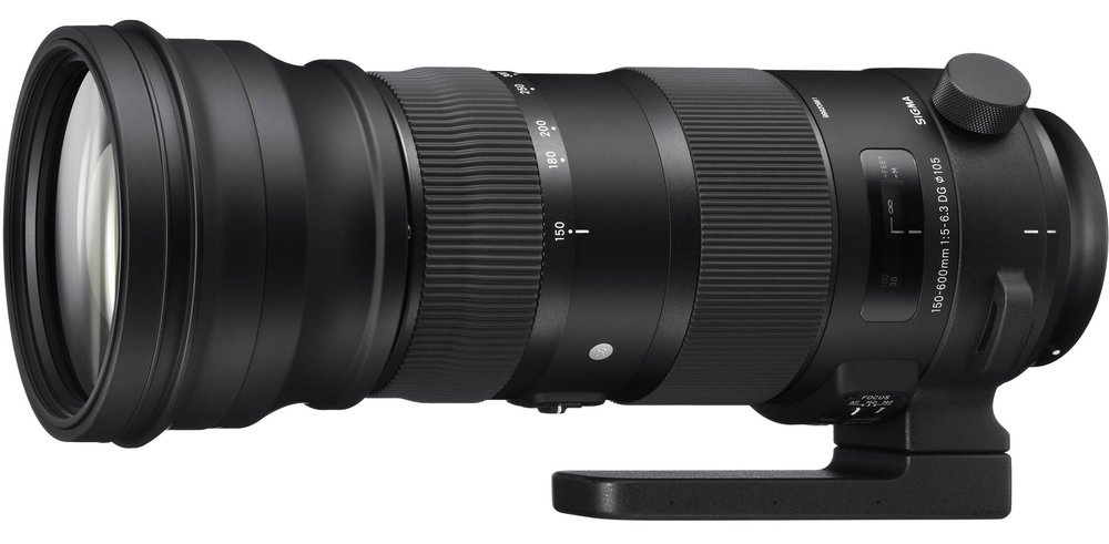 Sigma's Sport series 150-600/5-6.3 telephoto zoom.  It's big and a bit heavy, but is very impressive in its image quality