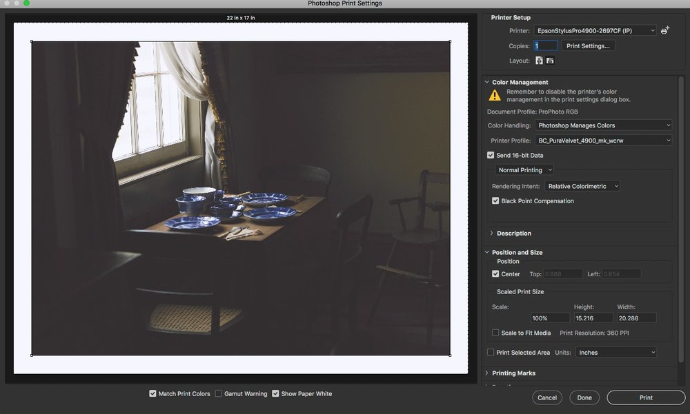 This is the photoshop print settings dialog.  Note no specifications of dpI anywhere.  Only the output size, in this case the native size from the iamge size dialog and the paper size, in this case 17x22.  The printer is not doing any colour correction or adjustment, I am seeing a soft proof for the paper, in this case breathing colour pura velvet