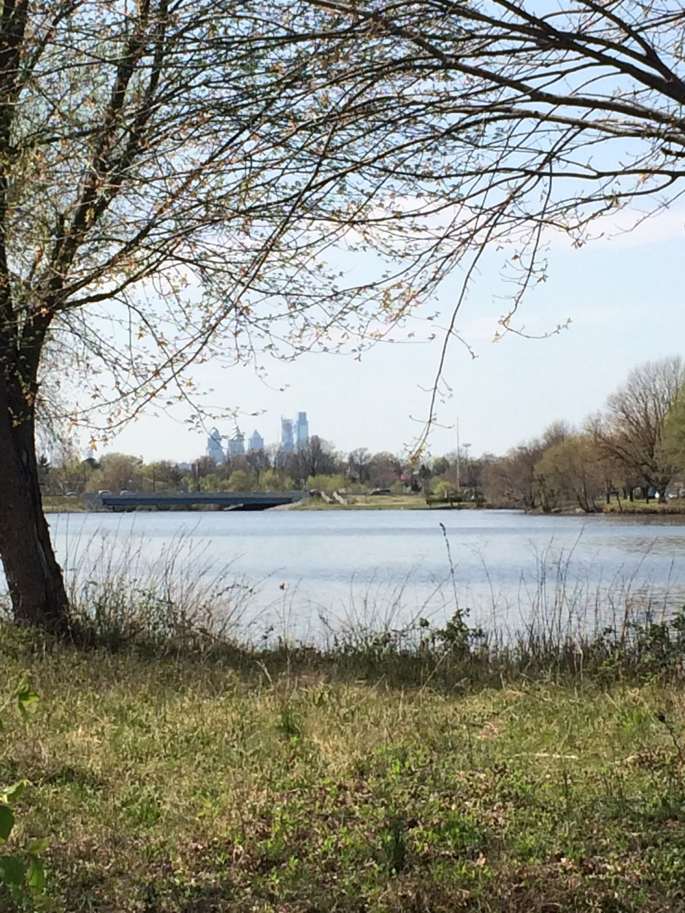 Cooper River.JPG